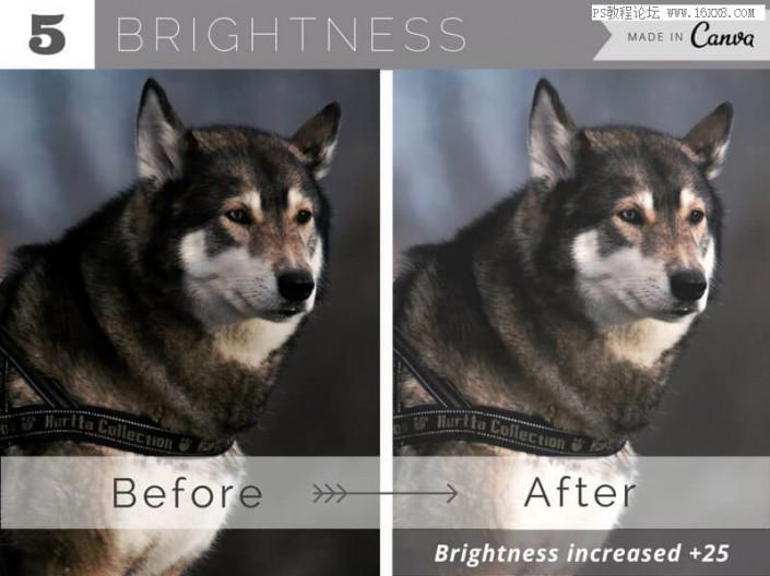 處理技巧,十個簡單好用的照片處理技巧_www.16xx8.com