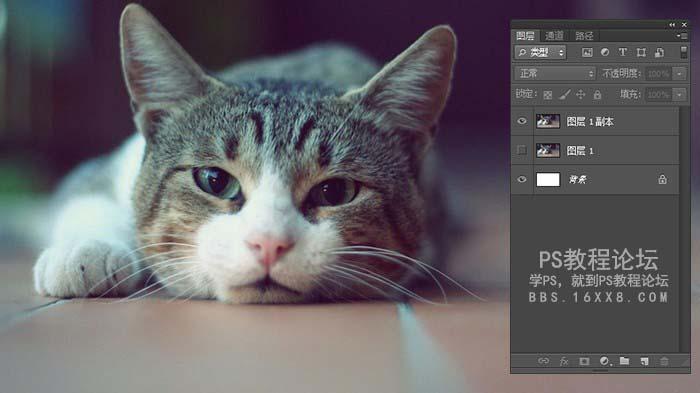 打印知识,如何把CMYK模式照片处理成单色黑的效果?_www.16xx8.com