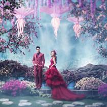蔷薇梦幻森林